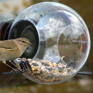 Born In Sweden - Bird Feeder