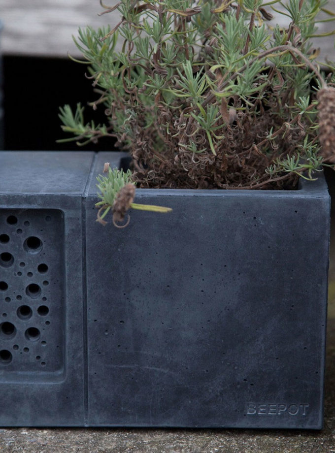 Green and Blue - Beepot Planter and Bee Hotel Charcoal