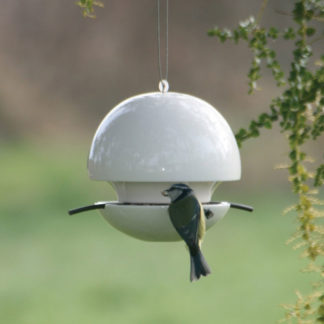 Green And Blue - Birdball Seed Feeder White