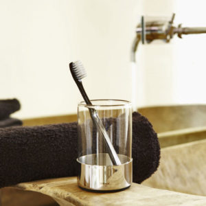 Blomus - Duo Polished Toothbrush Glass