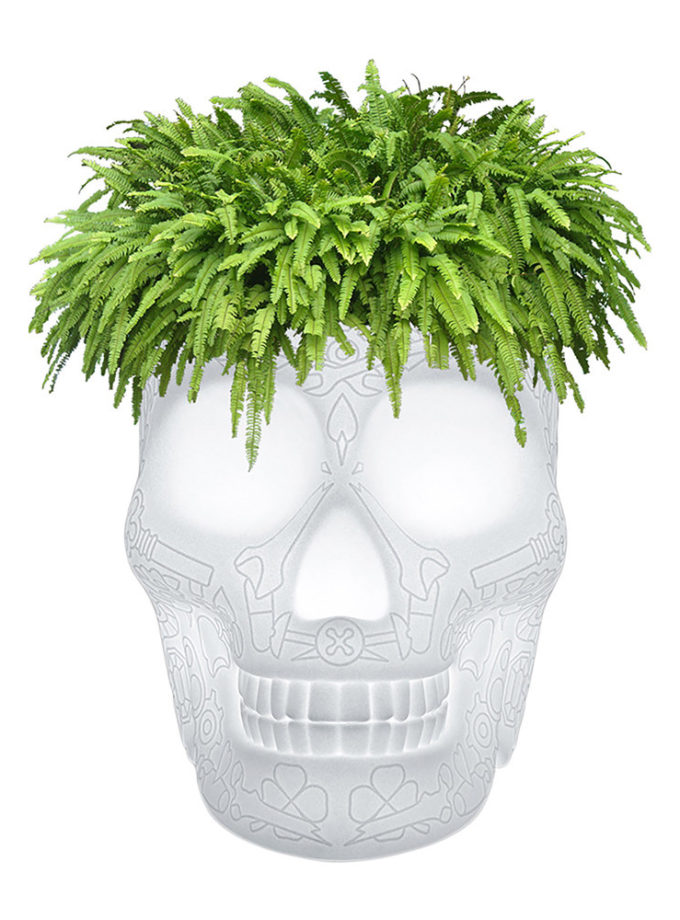 Qeeboo Mexico Skull Planter Champagne Cooler LED Light